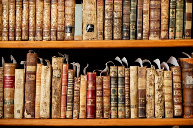 Antique library shelf. Picture.