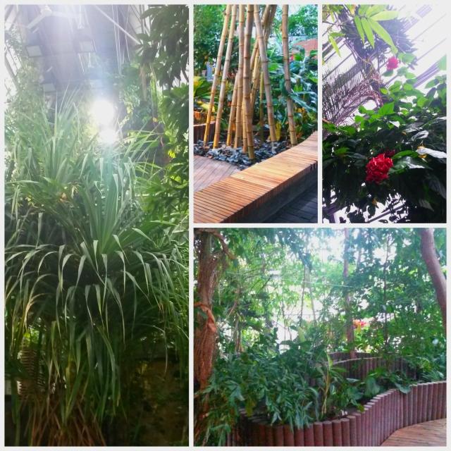 Gardenia2 Collage