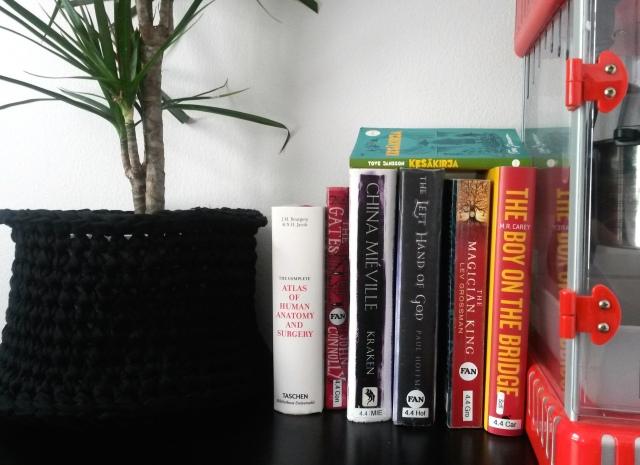 kirjat-lukuhaaste-kuva-books-reading-pauline-von-dahl