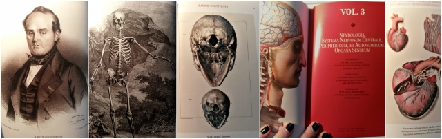 atlas-of-human-anatomy-and-surgery-taschen-pauline-von-dahl