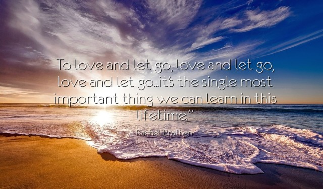rachel-brathen-yoga-quote-love-and-let-go-pauline-von-dahl